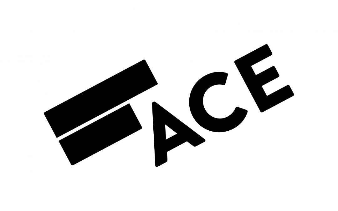 ACE announces the appointment of Darya Krasilnikov as its new acting director